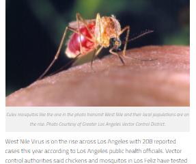 carl robinette los feliz ledger mosquito article