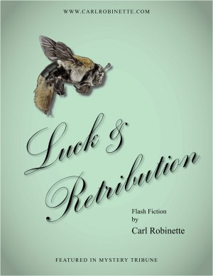 carl robinette crime fiction online flash luck & retribution cover free fiction online