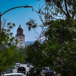 carl robinette beverly hills environmental reporting